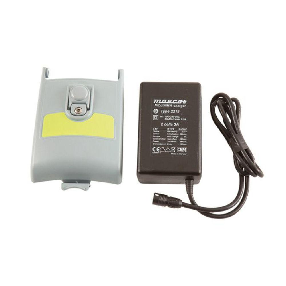 Аккумуляторы для локатора Radiodetection (220В)  + з/у