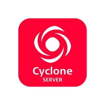 Программное обеспечение Leica Cyclone SERVER (798755)